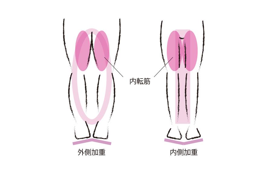 内側加重で太ももの内側にある内転筋を刺激
